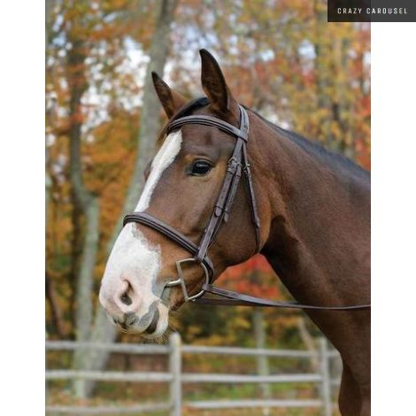 Avignon ocala bridle FULL