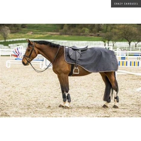 premiere exercise fleece rug