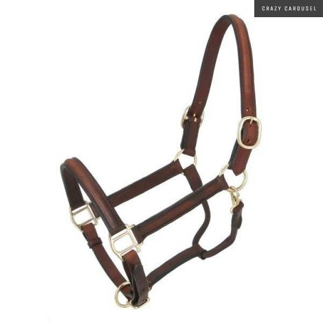 Leather halter-2
