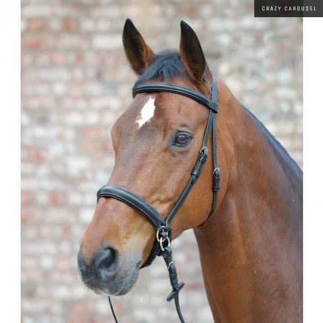 Star bitless bridle