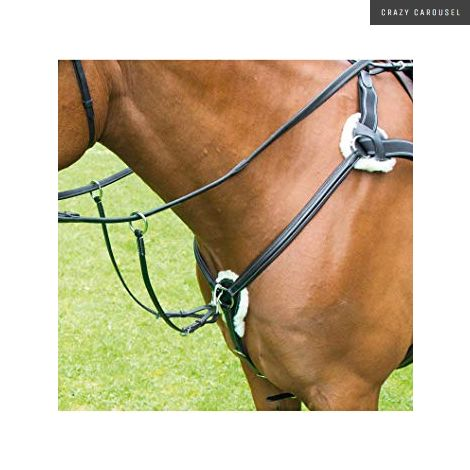 Avignon 5 Point Breastplate by Shires