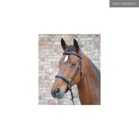 waldhausen bitless bridle-2